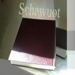 An Shawuot schenkte Gott den Seinen Seine Gesetze - zu Pfingsten der Papst und Luther das Gegenteil: den Heiligen Geist!