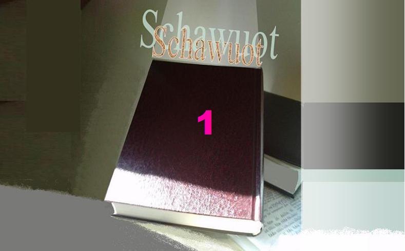 500 Jahre Reformations-Lüge – Schawuot 1